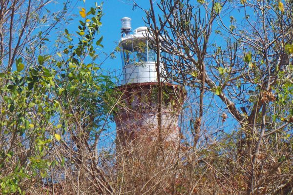 The Lighthouse as seen from the clearing below.