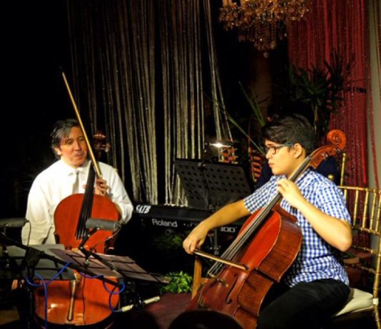 The Cellist and the Apprentice-South Of Metro